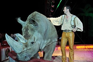 A circus rhino and his handler