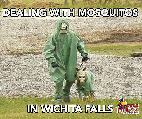 Dealing With Mosquitos in Wichita Falls